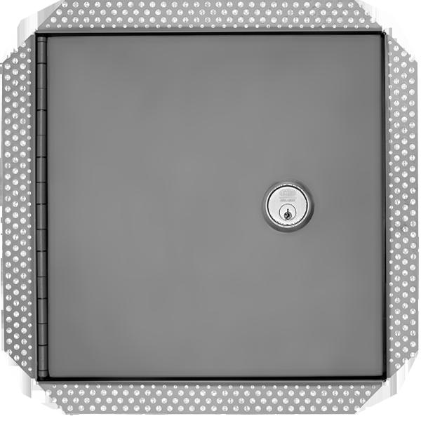 Medium Risk Security Access Panel
